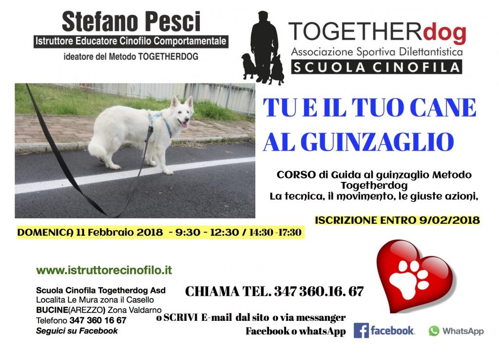 Tu e il tuo cane al guinzaglio - Corso Scuola cinofila Togetherdog