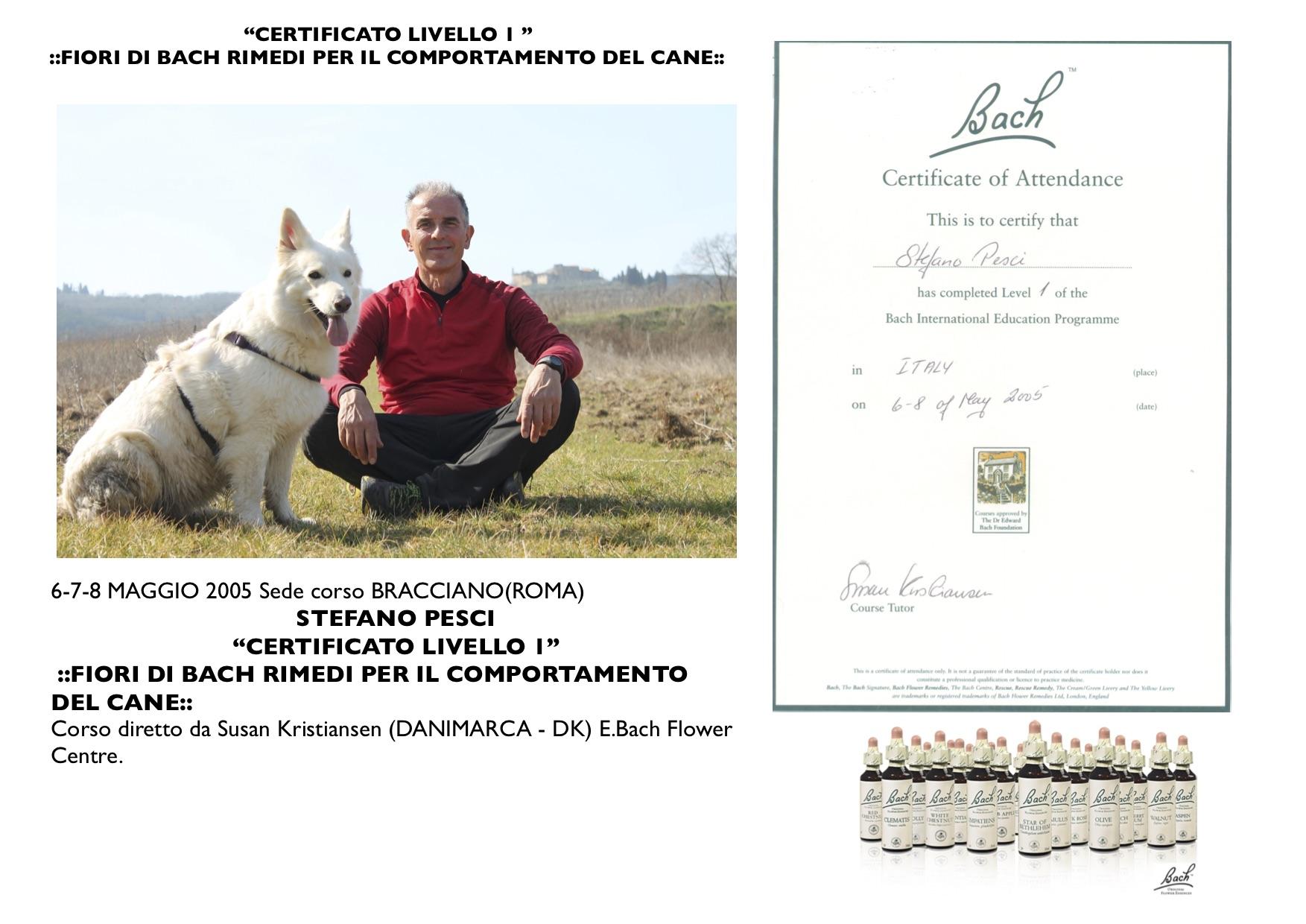 Stefano_Sharon_Certificato_Fiore_di_Bach_Livello_2FOTO