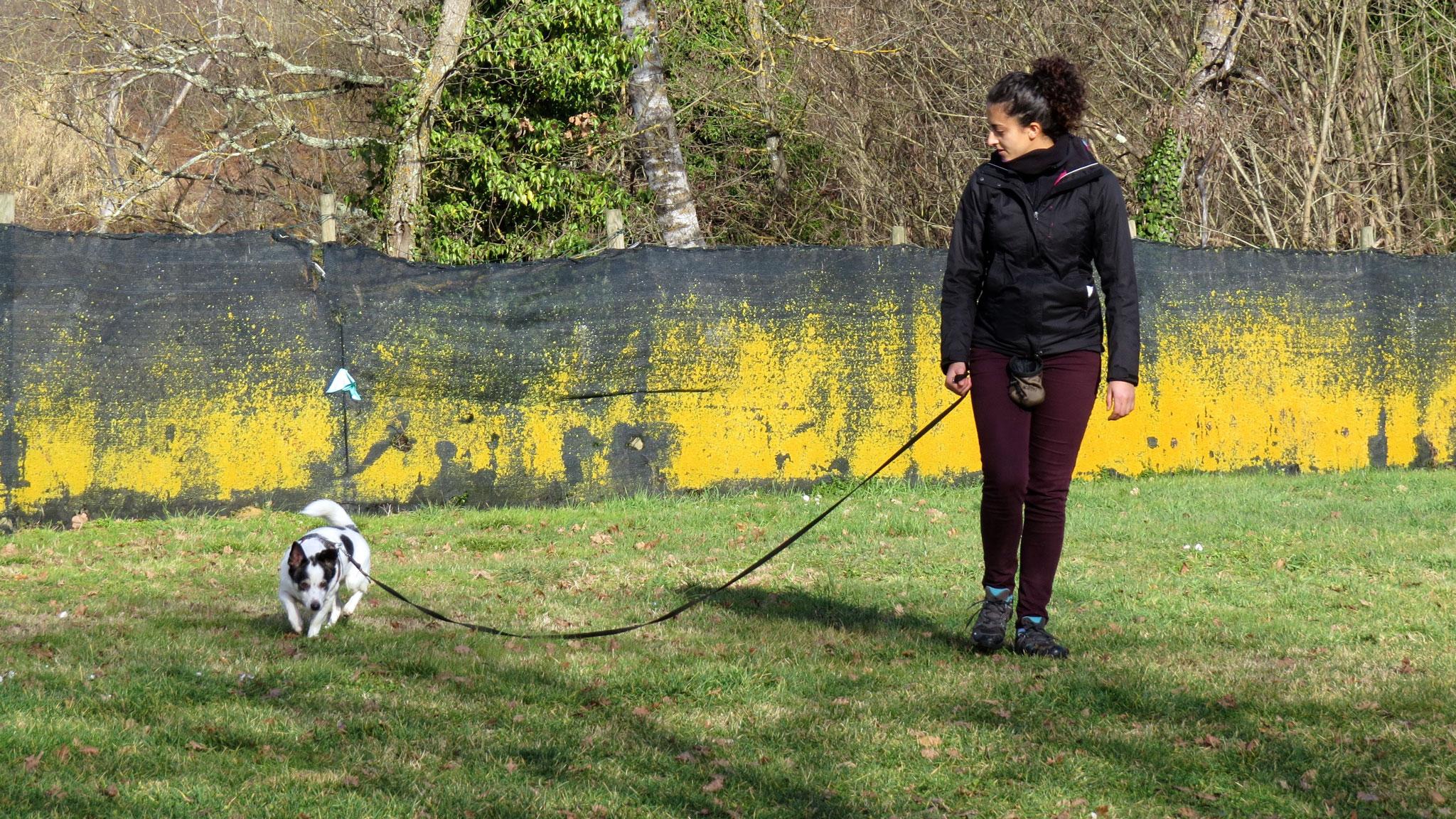 Silvia racconta la sua Esperienza al Corso Educatore Cinofilo Comportamentale Togetherdog