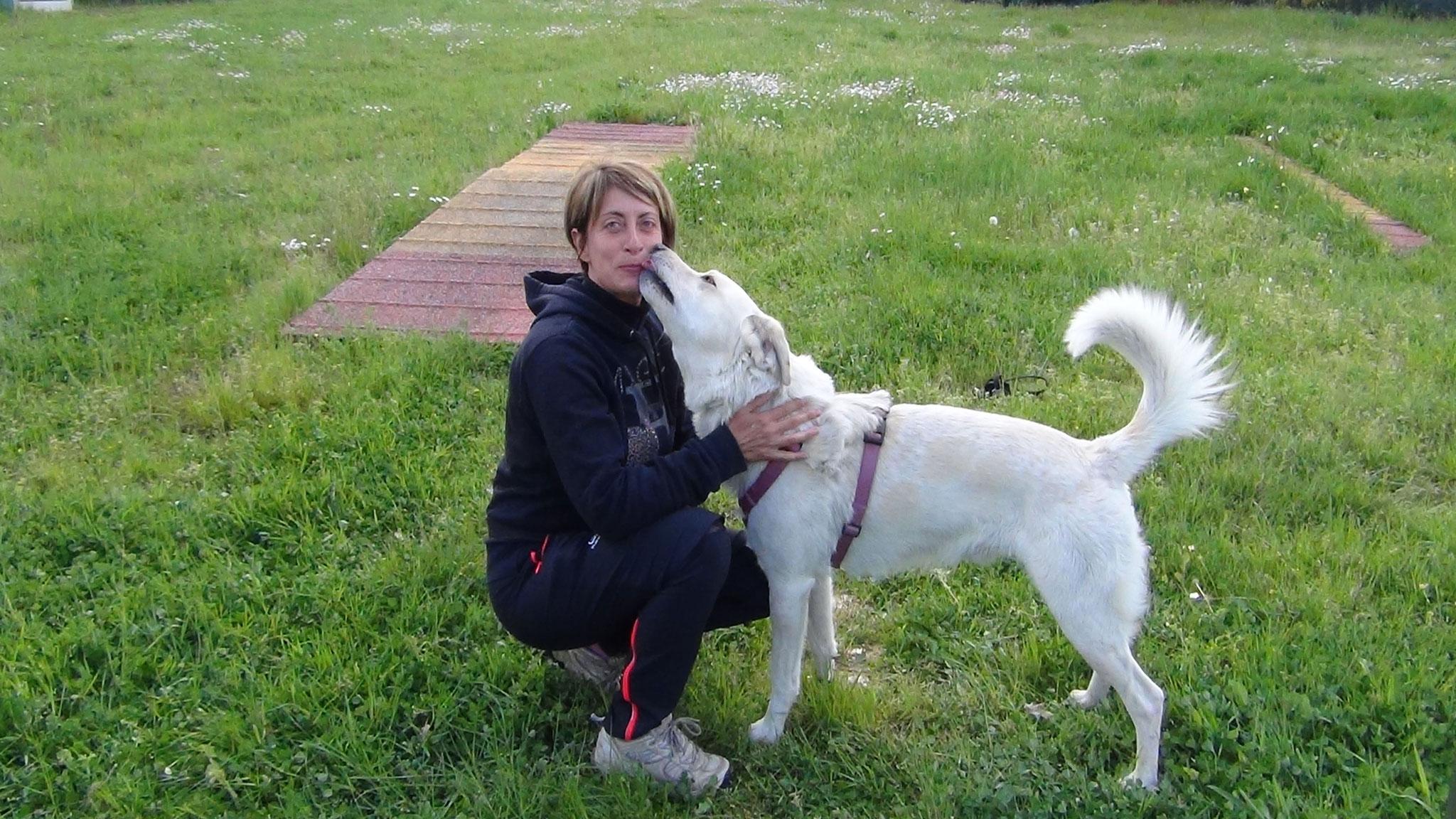 Affetto persona cane - Stefano Pesci istruttore Educatore Cinofilo Comportamentale