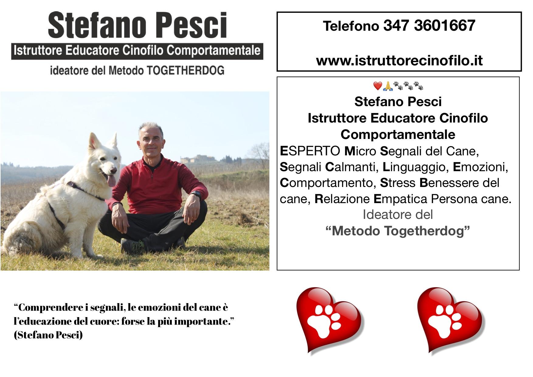 Posso Insegnarti Tante Belle Cose - Stefano Pesci istruttore Educatore Cinofilo Comportamentale