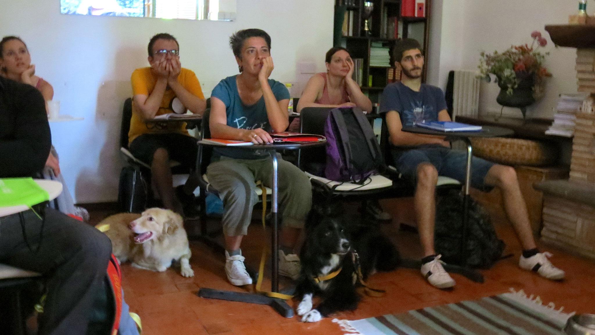Scuola di Formazione per Educatore Cinofilo Comportamentale TOGETHERDOG STEFANO PESCI