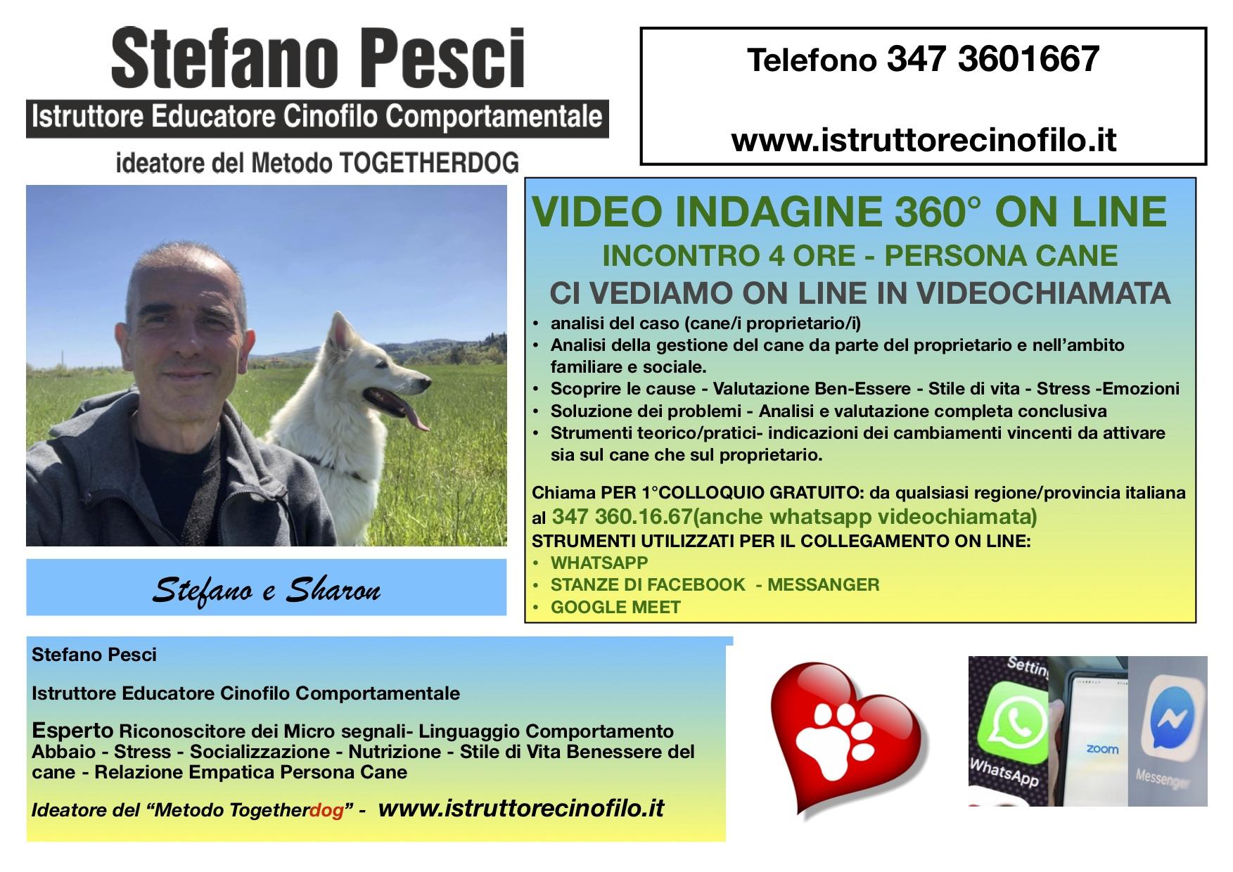 Indagine 360 gradi video chiamata on line -Stefano pesci Istruttore Educatore Cinofilo Comportamentale